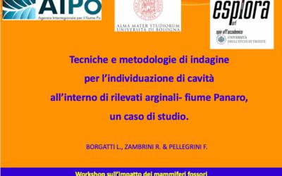Workshop sull'impatto dei mammiferi fossori sulle arginature dei corsi d'acqua